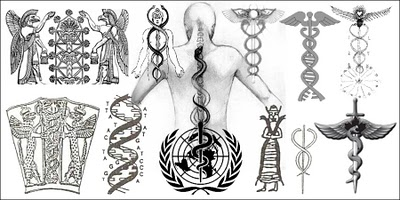 caduceus / DNA