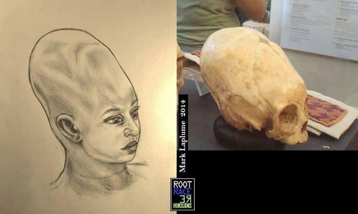 ELONGATED SKULL-BABY-CHIL- PARACAS-04