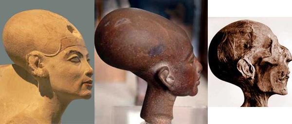 Elongated skull egypt 02