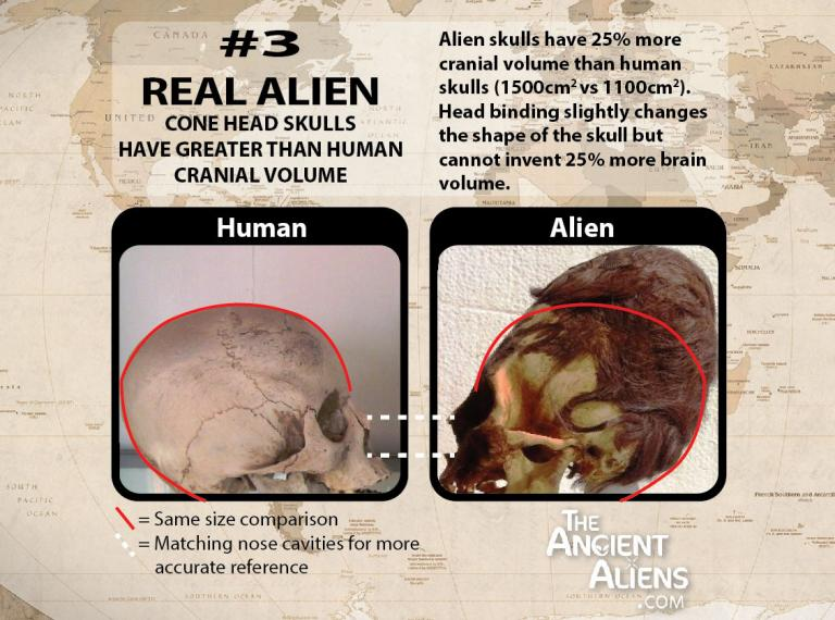 elongated skulls are not human skulls 03