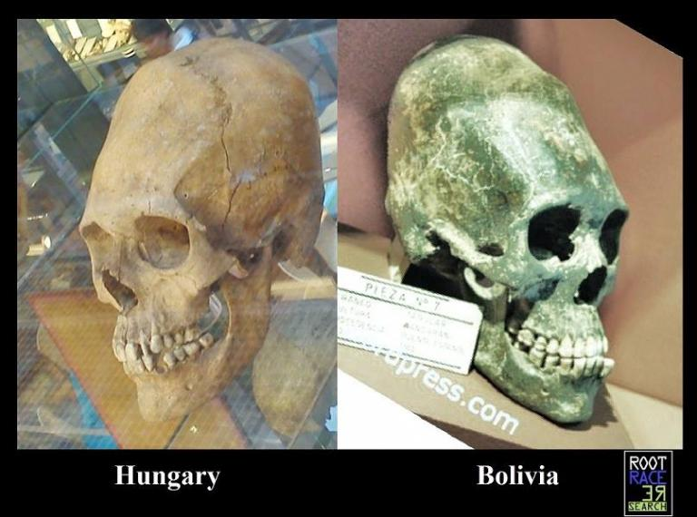 ELONGATED SKULLS HUNGARY AND BOLIVIA