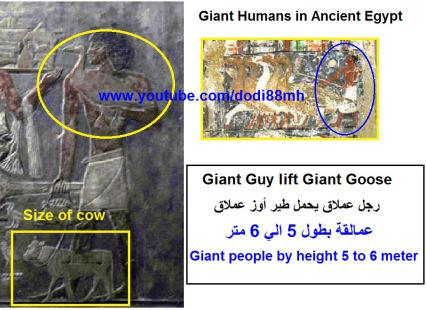 giant-birds-in-ancient-egypt2