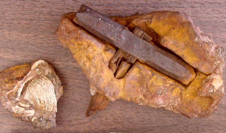 london hammer-dated back more than 400 million year-1