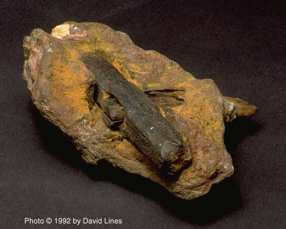 london-hammer-dated back more than 400 million year-2