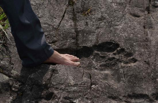 GIANT FOOTPRINT CHINA-(GUIZHOU)-1